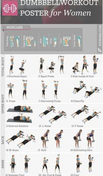 """Dumbbell Exercise Workout Poster - Laminated - 19""""x27"""""""