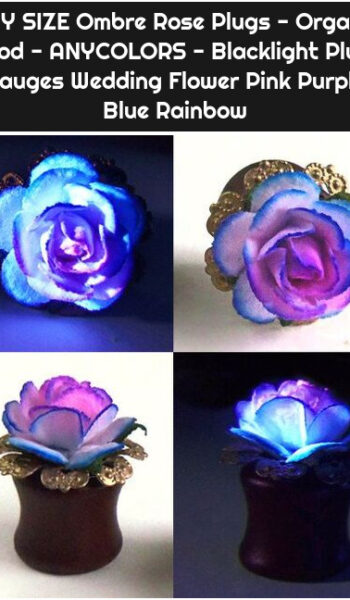 ANY SIZE Ombre Rose Plugs - Organic Wood - ANYCOLORS - Blacklight Plugs Gauges Wedding Flower Pink Purple Blue Rainbow
