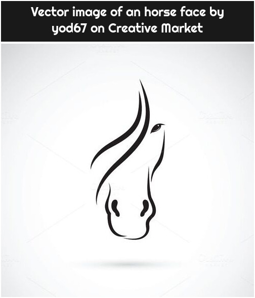 Vector image of an horse face by yod67 on Creative Market